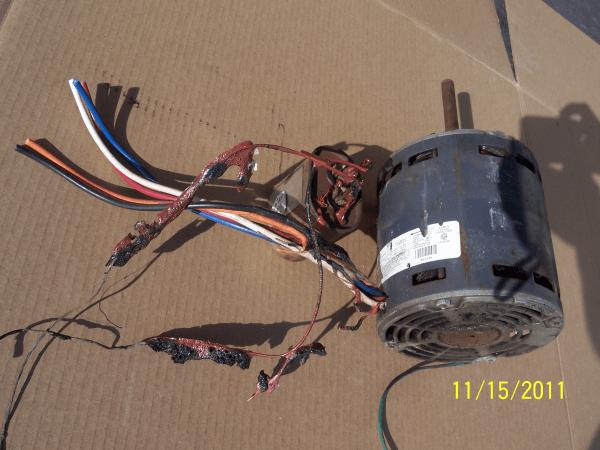 melted motor wiring nov 2011 003-resized-600