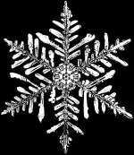 snowflake National Oceanic and Atmospheric Administration-resized-600